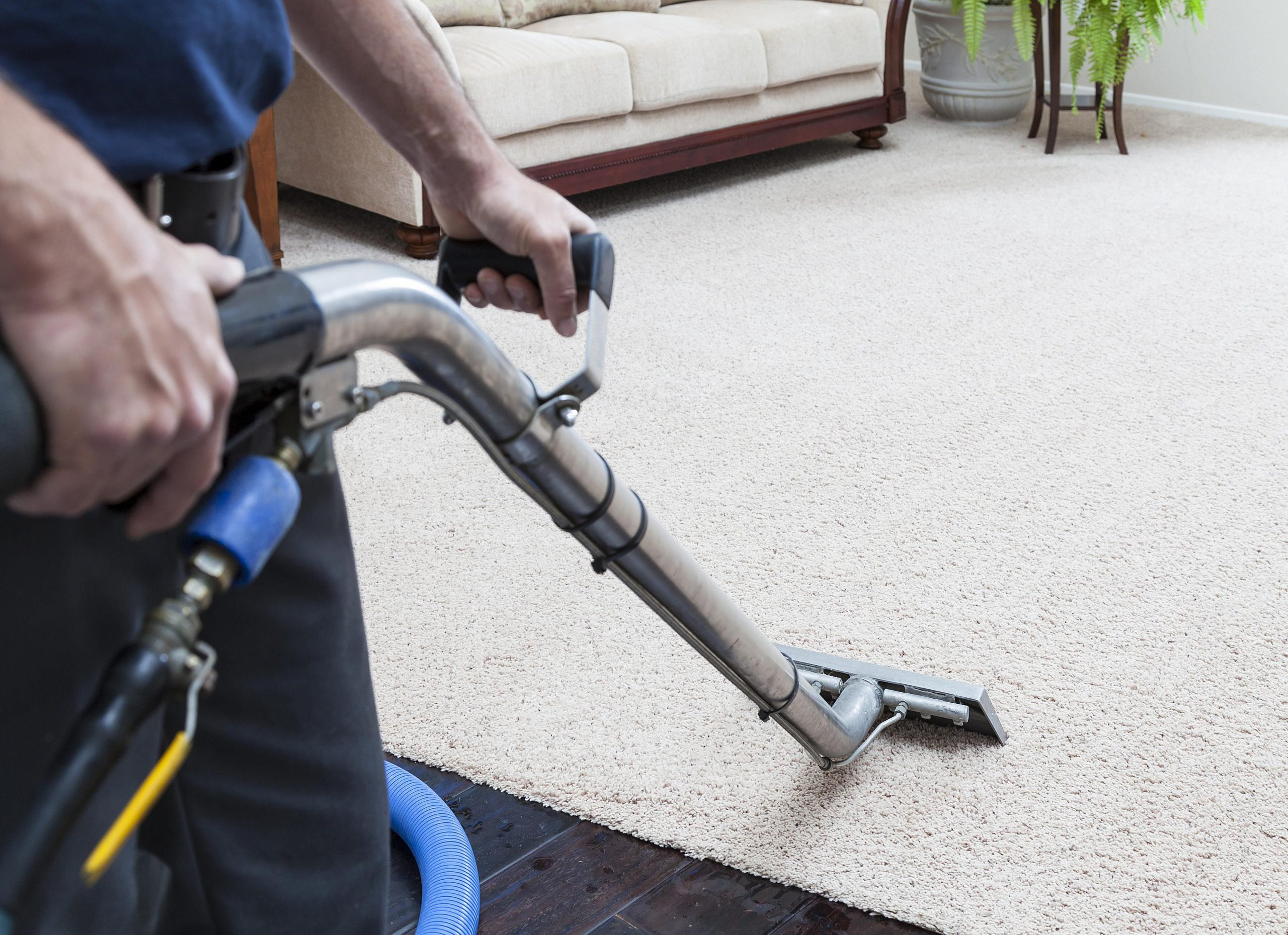 Successfully Keep Your Carpets Fresh With These Tips.